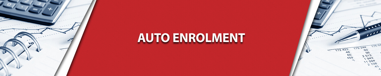 Auto Enrolment Service